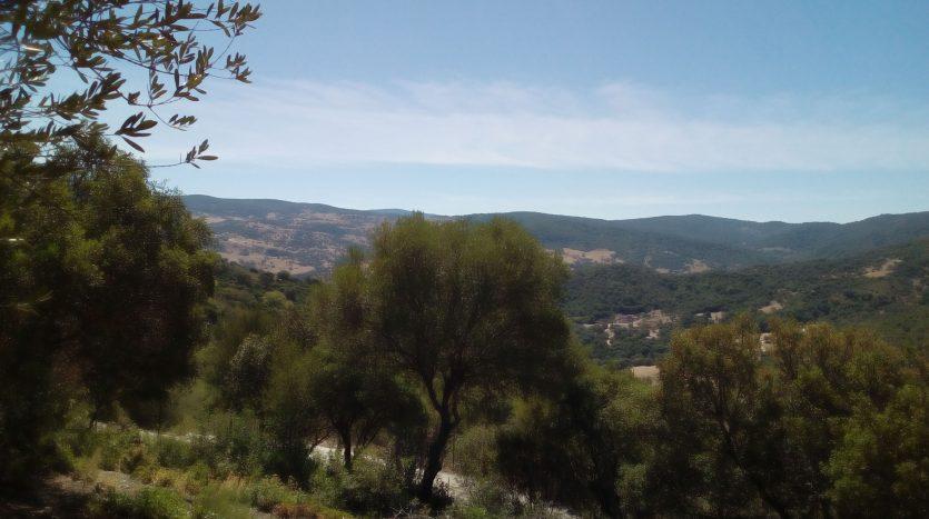 Finca Cerro Mulera, 7.000 m2, casa 80 m2, porche, cbarbacoa, vistas